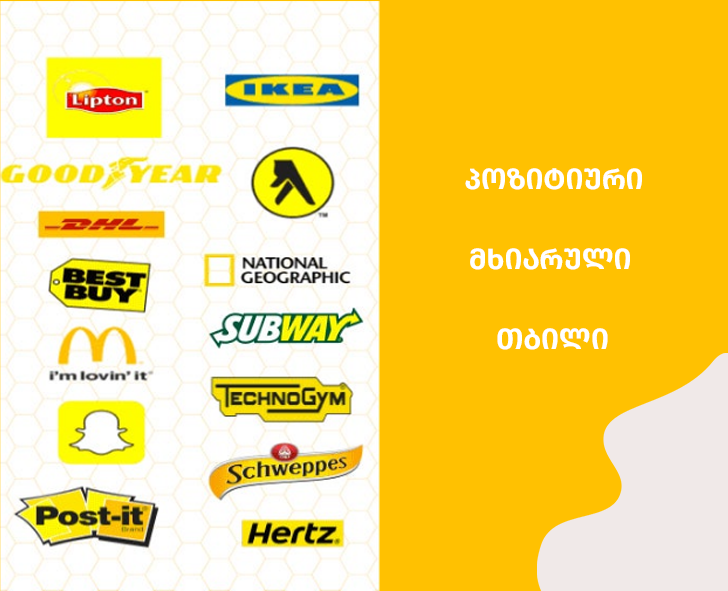 საიტი,საიტის დამზადება,ყვითელი,ბრენდინგი,მობილური აპლიკაციის დამზადება,websaitis damzadeba,mobile app,branding,logo