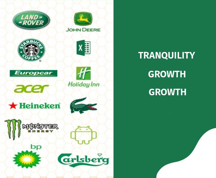 websaitis damzadeba,mobile app,branding,logo